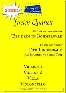 2 Streichquartette